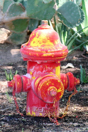 USA - Fire hydrant