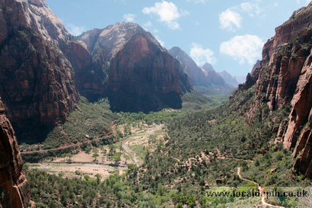USA - View before turning into Refrigerator Canyon, Zion National Park