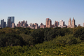 USA - View of the New York skyline, across Central Park, from the Metropolitan Museum