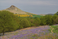 UK - Roseberry Topping, North Yorkshire