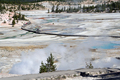 Yellowstone - Boardwalk crossing Porcelain Basin, Norris Geyser Basin, Yellowstone National Park
