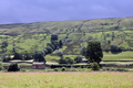 UK - Field barns in Upper Swaledale